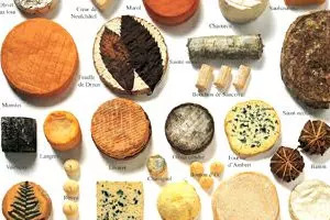 Calendrier Des Poissons Et Fruits De Mer De Saison.Bien Manger Selon Les Saisons Actualites Sur L